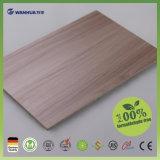 전통적인 Wood-Based 위원회, 전통적인 파티클 보드, 마분지를 대체하는 Ecoboard