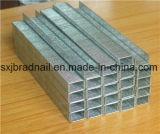 Agrafes industrielles de qualité pour des meubles