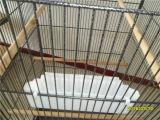 Metallhaustier-Rahmen/chinesischer Berufsbirdcage-Hersteller-/Papageien-Rahmen