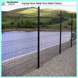 Konkurrierendes Price New Design 2X4 Double Wire Fence