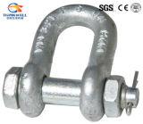 Us Tipo G2150 Tipo de perno Grillete de cadena / D Grillete
