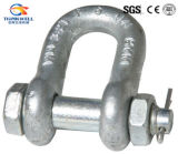 Nós tipo G2150 Tipo de parafuso Chain Shackle / D Shackle