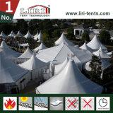 Spezielles Entwurf Multi-Seiten Zelt für im FreienHochzeitsfest-Ereignis