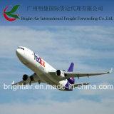 DHL, TNT, Federal Express, expédition exprès de courier d'UPS évalue le service porte-à-porte de Chine à dans le monde entier
