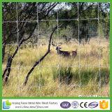 Frontière de sécurité agricole de maille du joint articulé V pour des animaux