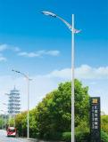 Migliore indicatore luminoso di via solare di prezzi 10m Palo 100W LED