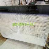 플라스틱 메시가 닭 메시 가금에 의하여 그물에 걸린다