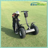 Ecorider zwei Rad-Selbstschwerpunkt-elektrischer Roller Segwaying Art-Golf-Wagen