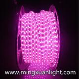 색깔 24 달은 보장 선택적인 5050-5m-300SMD LED 지구를 방수 처리한다