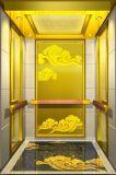 Elevador do elevador do passageiro dos lombos do fabricante profissional com Ce