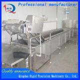 De Machine van het multifunctionele Fruit en het Plantaardige Schoonmaken (Facultatieve de Generator van het Ozon)