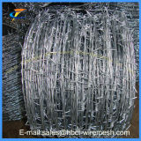 Колючая проволока /Galvanized колючей проволоки/электрическая гальванизированная колючая проволока