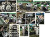 Bombas de água submergíveis elétricas 220V/380V de Qdx6-15-0.55 Dayuan, 0.75HP