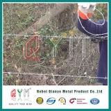 Doppio filo del ferro di torsione galvanizzato TUFFO/filo per la rete fissa