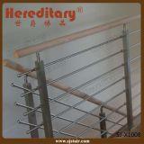 Edelstahl-materielle Gitter-Entwurfs-Balustrade für Treppenhaus (SJ-X1008)
