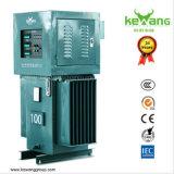 Controle automático do servo motor do estabilizador da tensão para o repouso & as indústrias