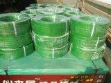 Het groene KringloopHuisdier dat van de Riem van de Singelband van het Huisdier van de Polyester van Fabriek vastbindt