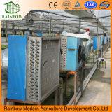 Transparente Po Anti-UV Invernadero de Protección contra Insectos con Película Plástica