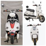 Venda quente e motocicleta 800W elétrica esperta