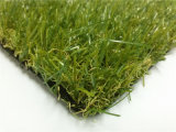 Grama Carpet para Landscaping e Synthetic Grass