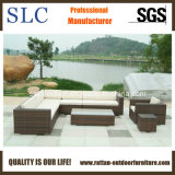 Mobilia del giardino, sofà del giardino impostato (SC-B6018)