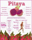 음료와 음식 취향을%s Pitaya 과일 주스 분말