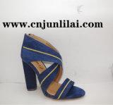 Chaussures de femmes avec le modèle piquant