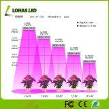 La pianta idroponica di spettro completo coltiva gli indicatori luminosi per la serra idroponica del giardino dell'interno