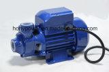 Pompa elettrica dell'acqua della pompa di vortice di Qb