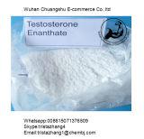 근육 대량에게 얻을 승진시키는 근육내 주입 테스토스테론 Cypionate