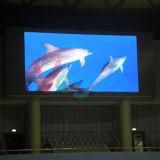 Écran polychrome d'intérieur parfait d'Afficheur LED de l'effet 4mm de visibilité