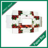 Gewölbte Frucht-Kästen, Kirschfrucht-verpackenkasten (FP020009)