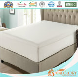 Saint Glory TPU Laminage Mattress Encasement