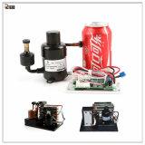 Pequeño compresor del refrigerador con la tarjeta de programa piloto variable de la velocidad para el pequeño sistema de bucle flúido