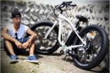 Горячий продавая E-Bike типа пляжа 2016 с автошиной сала 4.0inch