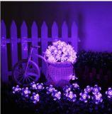 Zeichenkette-Licht des Fabrik-Preis-Solaranhänger-10m50LED LED