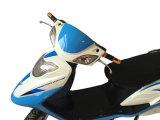 """""""trotinette""""s de motor elétrico das E-Bicicletas de 800W 40km/H 48V/20ah"""