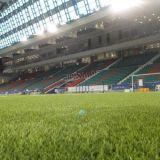 de 50m m de la fábrica césped artificial de la hierba directo/fútbol artificial del balompié del césped