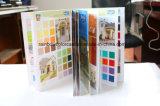 Brochure de couleur d'impression pour peinture intérieure et extérieure