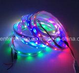 Свет прокладки фантазии света прокладки СИД 5050 цветастый