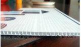 De Vertoning van pp Corflute Coroplast Correx en Signage Raad met de Stal van /UV van de Druk