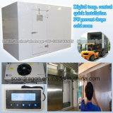 DigitalTemp. Schnelle Installation PU steuern verhindern Absinken-Kühlraum