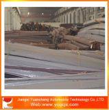 Barra lisa de aço da mola laminada a alta temperatura de Suppy da fábrica de China