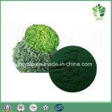 Proteina naturale pura 60%, polvere di 100% dell'estratto di 65% Spirulina platensis
