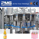 Máquina de rellenar del jugo caliente automático de Furit para la cadena de producción