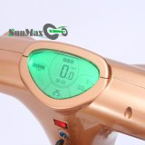 12インチの車輪ブラシレスギヤモーター36V 300Wリチウム電池のFoldable電気スクーター