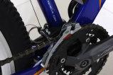 [250و] [ليثيوم بتّري] كهربائيّة درّاجة [لكد] عرض دواسة [متب] درّاجة لأنّ عمليّة بيع