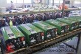 Hybride ZonneOmschakelaar met lage frekwentie 5000W met AC Lader