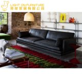 Sofá de tecido e sofá de couro e mesa de café e móveis modernos