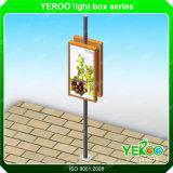Alluminio Lightbox della via dei segni del Palo della lampada di Video-Illuminazione dell'alberino della lampada
